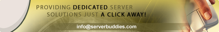 Providing Dedicated Server Solutions Just a Click AWAY